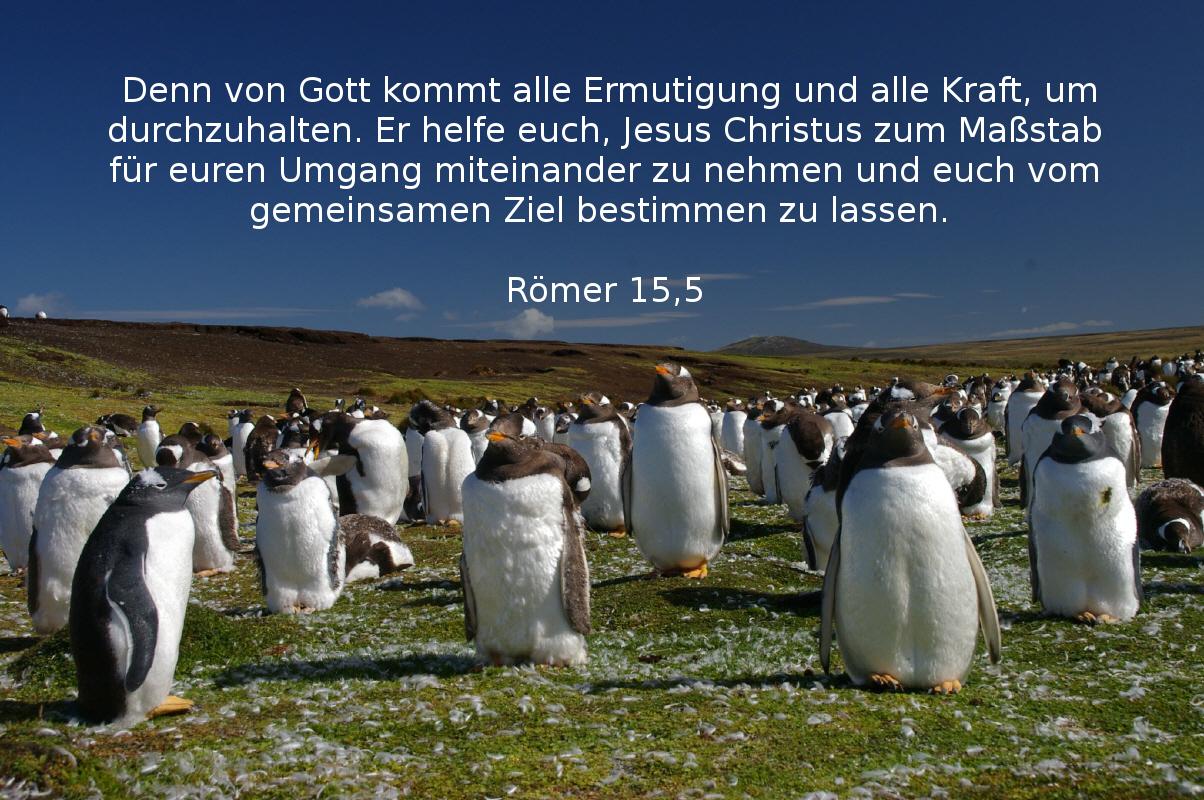 Ermutigung - Römer 15,5